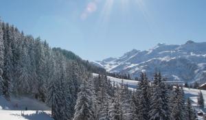 Domaine skiable de Brides-les-Bains