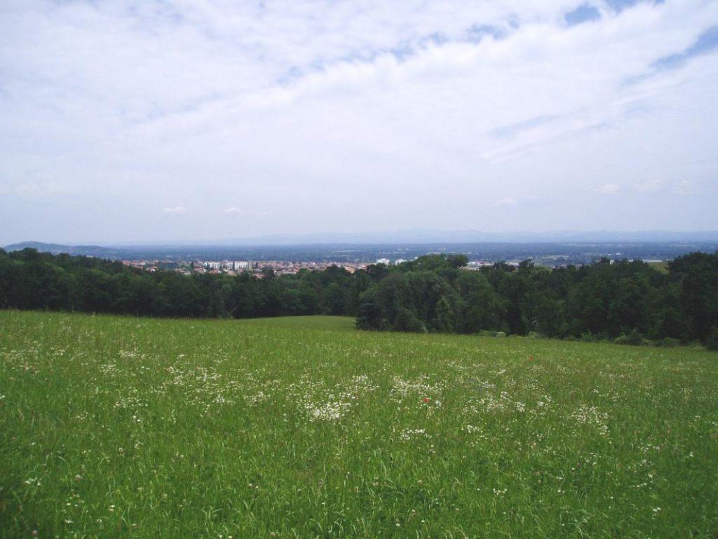 panorama-montbrison